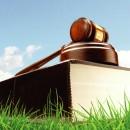 ИЗВЕЩЕНИЕ опроведении аукциона 12.05.2020 попродаже земельных участков иправ назаключение договоров аренды земельных участков