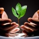 В Череповце вакантно десять мест на бюджетное обучение в Школу социального предпринимательства