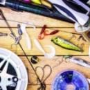 Первое поручительство в 2020 году выдал Центр гарантийного обеспечения МСП. Поддержку получил индивидуальный предприниматель из Вологды